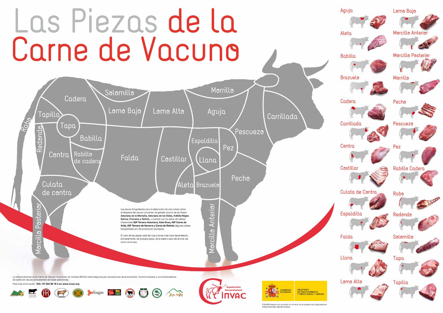 Las piezas de la Carne de Vacuno
